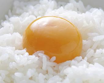 デイリーファームの卵が美味しい理由
